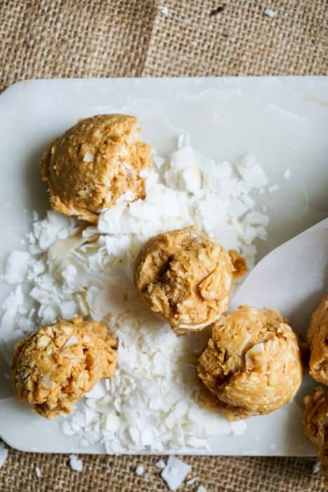 no bake peanut butter cookies on a bed of coconut flakes