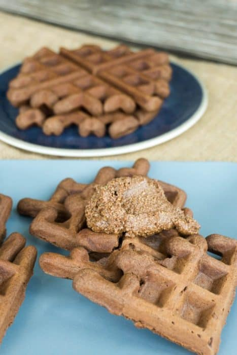 These Keto double chocolate low carb waffles are perfect for any meal of the day and are good enough to be eaten plain or topped with your favorite toppings!