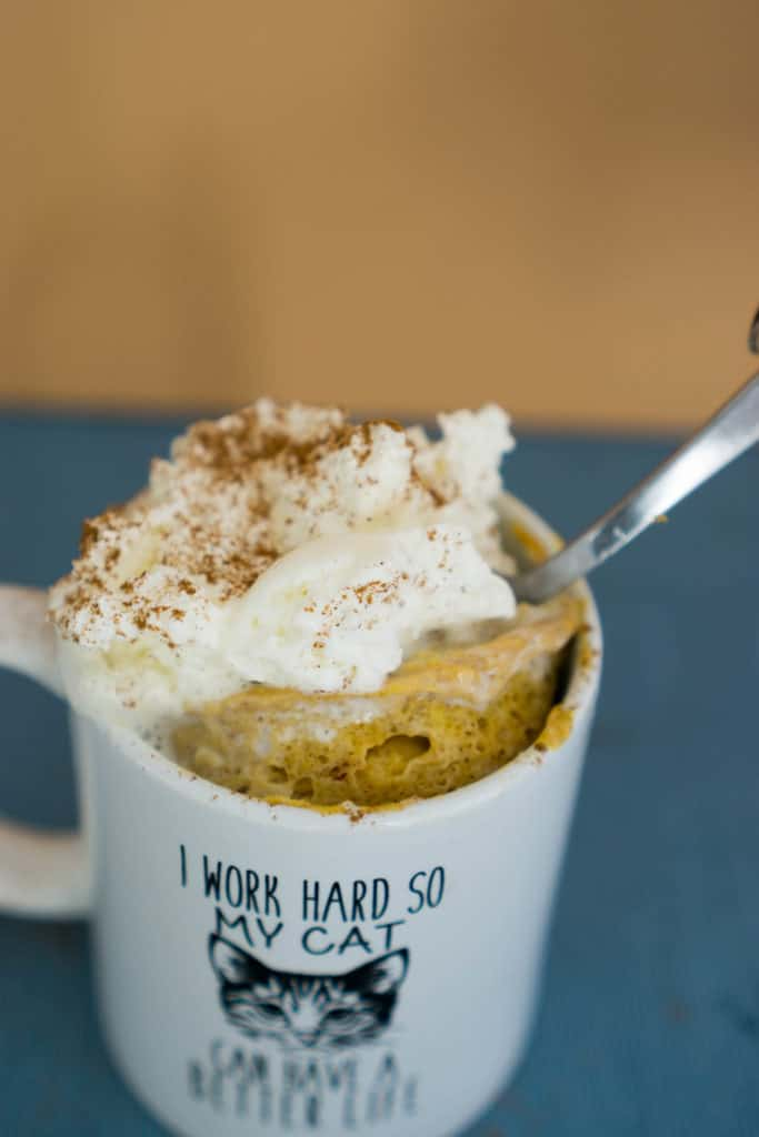 Pumpkin Mug Cake Ketoconnect