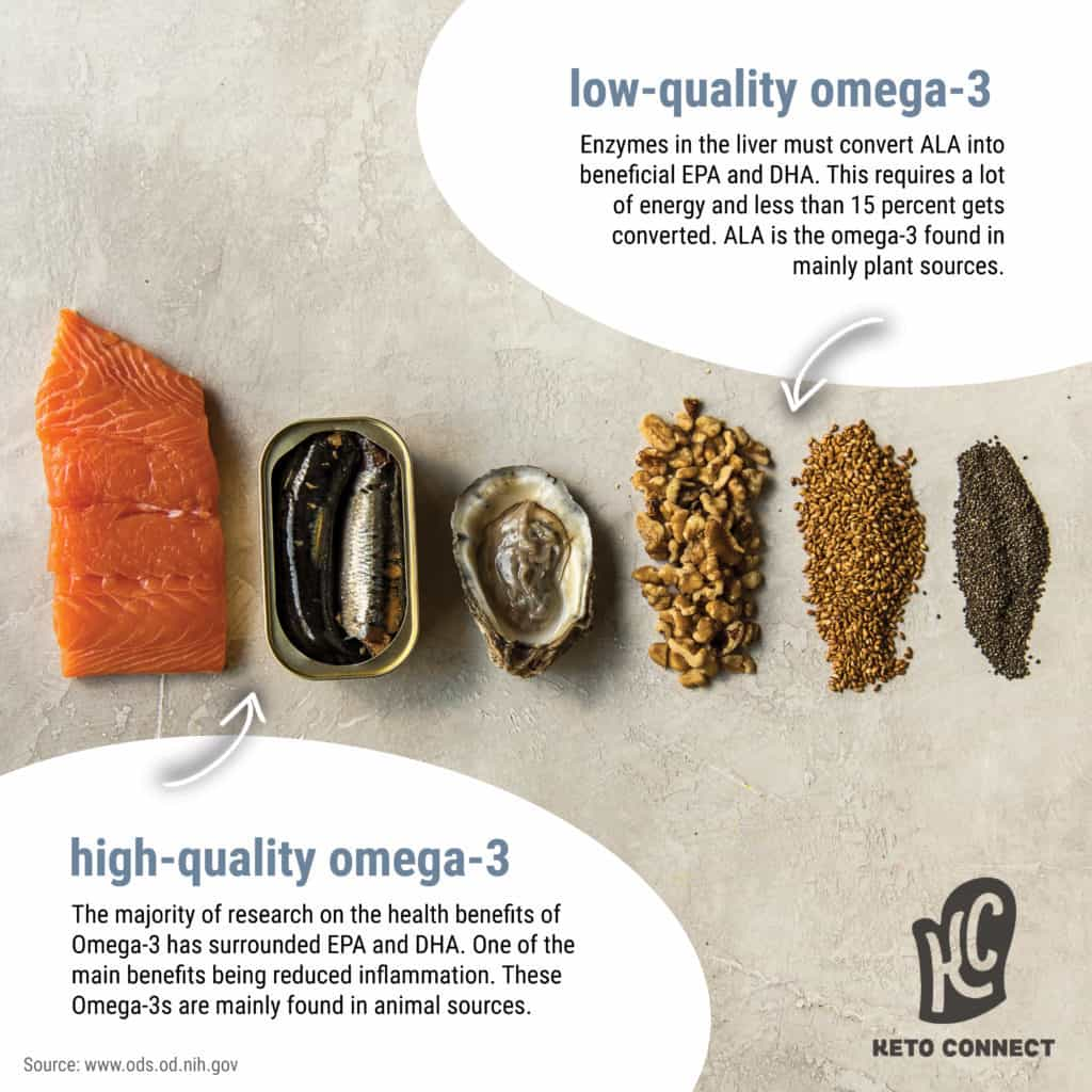 different high omega 3 foods are shown with text describing the differences between plant and animal forms of omega 3
