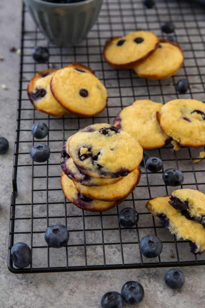 muffin top coconut flour cookies on a cooling rack surrounded by fresh blueberries