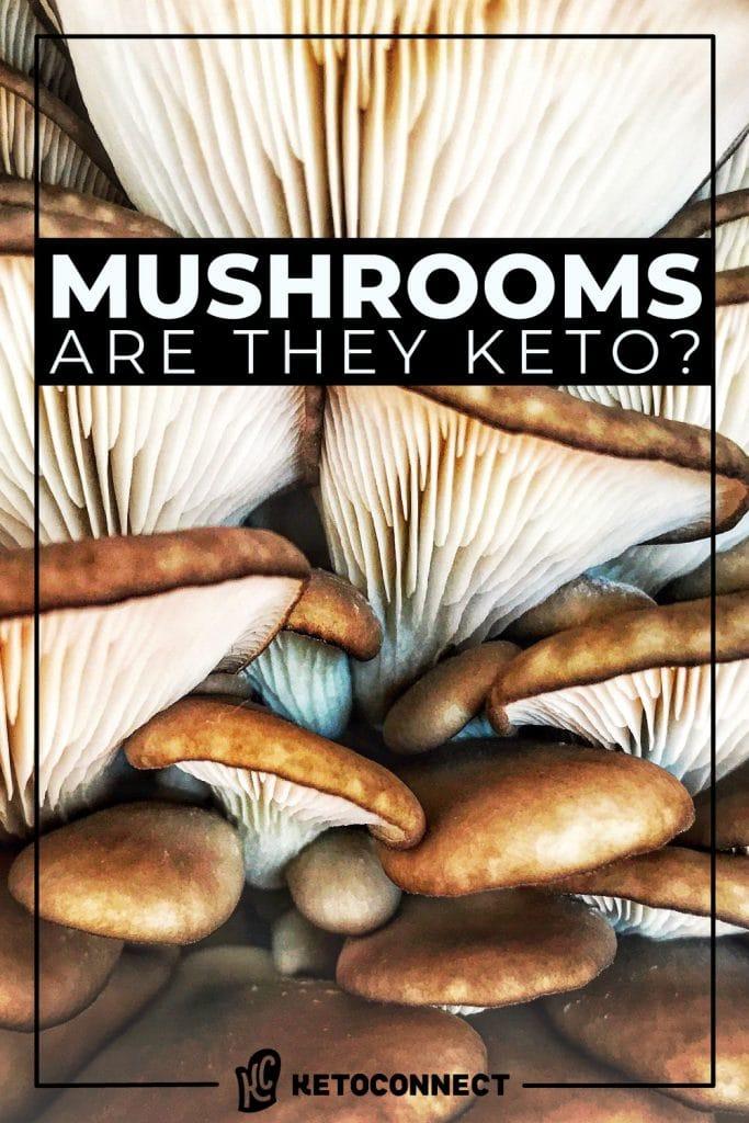 are mushrooms a keto friendly food