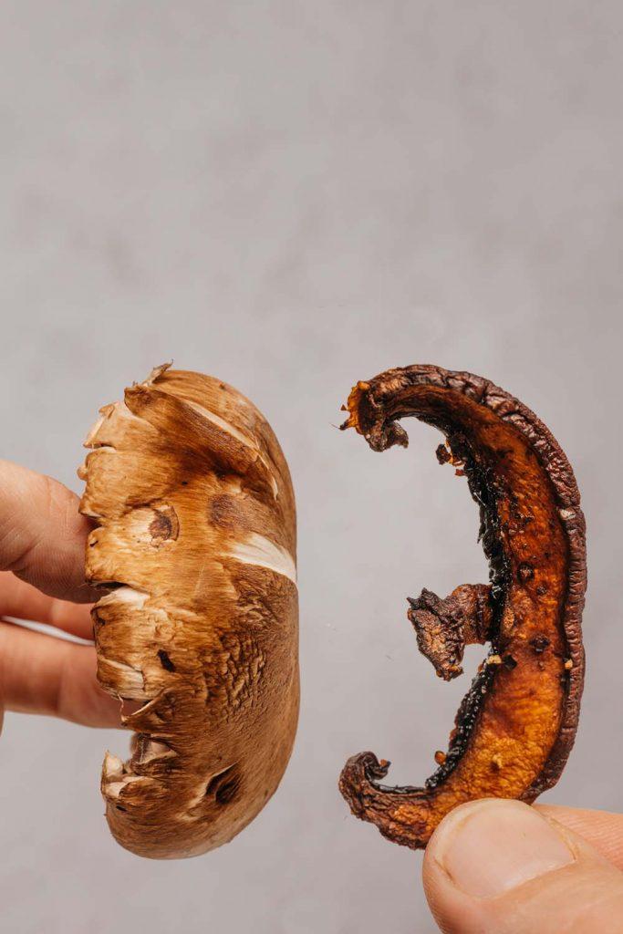 fresh mushroom being held next to a mushroom chip